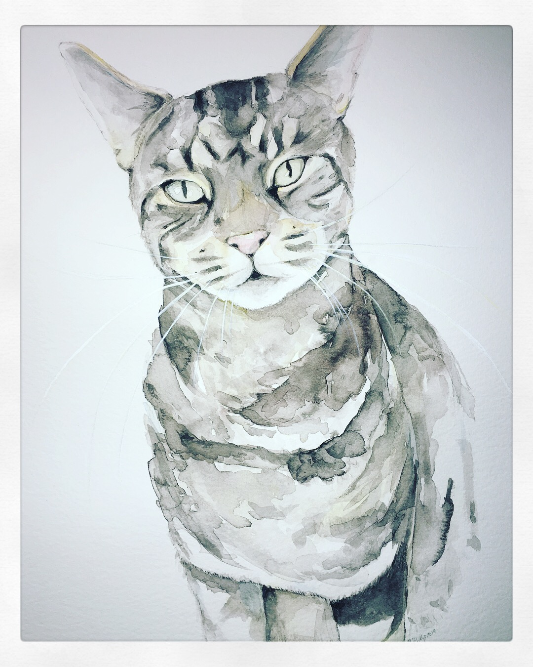Tabby Cat by Ashley Wilks Art